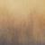 GRADIENT BRASS Icon
